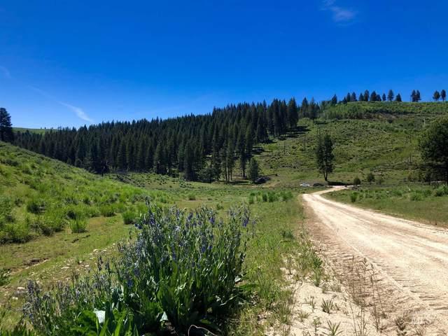 P-6 Arb Survey Sec12 T1n R9e, Pine, ID 83647 (MLS #98800150) :: Shannon Metcalf Realty