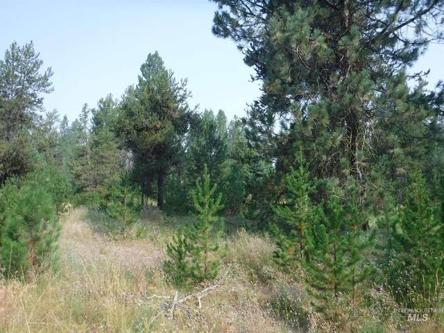 TBD Lot 2 Mineral Dr, Cascade, ID 83611 (MLS #98800691) :: Epic Realty