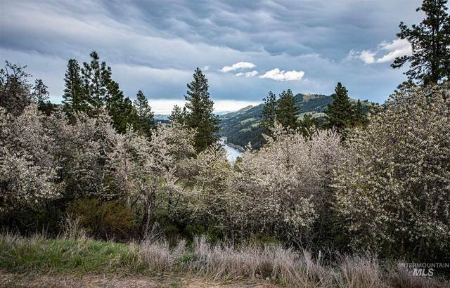 0000 River View Estates, Lenore, ID 83541 (MLS #98800901) :: The Bean Team
