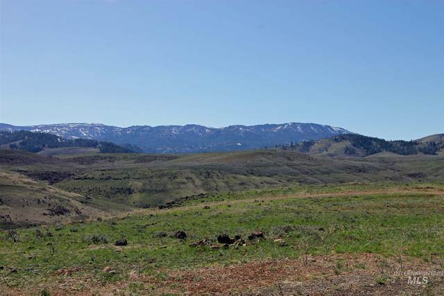 TBD North Hornet Creek Rd - 180 Ac, Council, ID 83612 (MLS #98801301) :: Boise River Realty