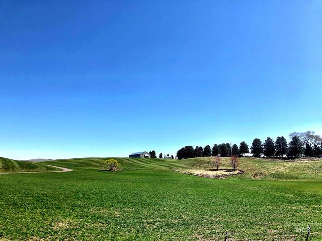 2224 Old Hwy Rd, Midvale, ID 83645 (MLS #98801395) :: Epic Realty