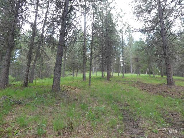 22741 Old Melrose Grade, Peck, ID 83545 (MLS #98801696) :: Epic Realty