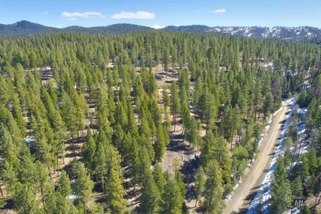 29 Duke Lane, Donnelly, ID 83615 (MLS #98801729) :: Epic Realty