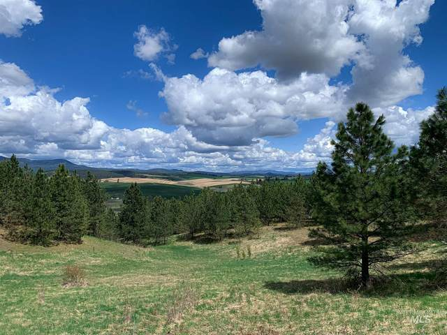Lot 6 Katnook Lane, Moscow, ID 83843 (MLS #98801948) :: Navigate Real Estate