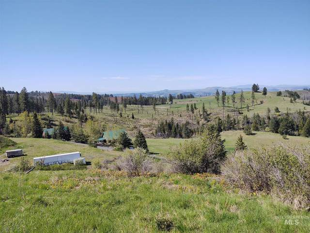 172 Shenandoah Drive, Kamiah, ID 83536 (MLS #98802136) :: Build Idaho