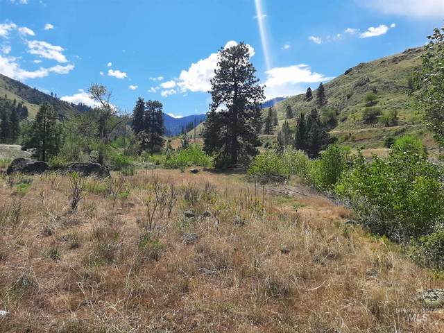 TBD Hwy 95, Pollock, ID 83547 (MLS #98802645) :: City of Trees Real Estate