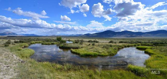 Pahsimeroi Road, Clyde, ID 83244 (MLS #98802676) :: Team One Group Real Estate