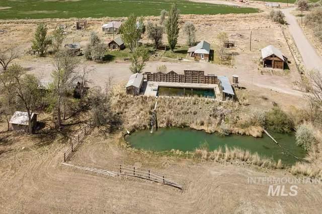 34921 Hot Creek Rd, Bruneau, ID 83604 (MLS #98802858) :: Haith Real Estate Team