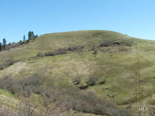 TBD Kidder Ridge Road, Kooskia, ID 83539 (MLS #98802945) :: Boise River Realty