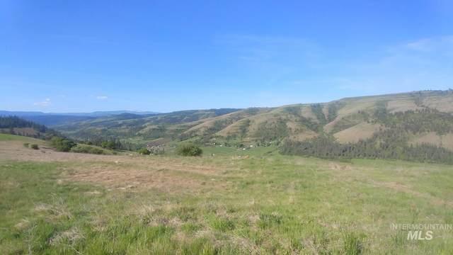 TBD Battle Ridge Road, Kooskia, ID 83539 (MLS #98803012) :: Boise River Realty
