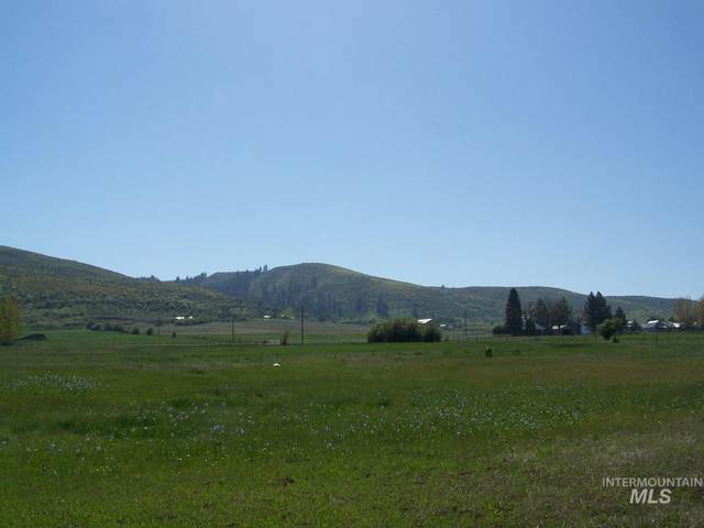 TBD S Exeter Lot 2, Council, ID 83612 (MLS #98803307) :: Jon Gosche Real Estate, LLC