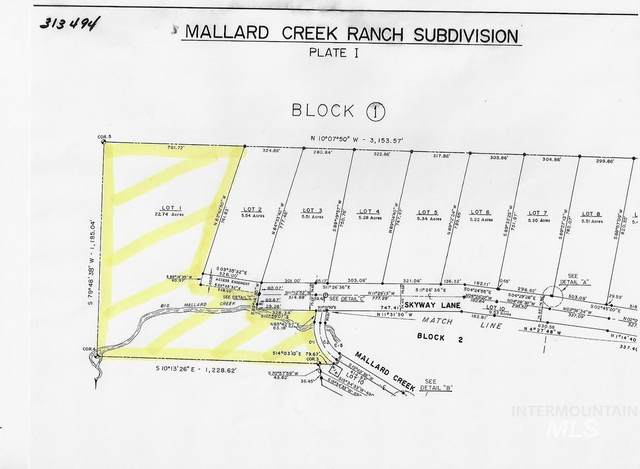 TBD Mallard Creek Road, Elk City, ID 83525 (MLS #98803445) :: Boise River Realty