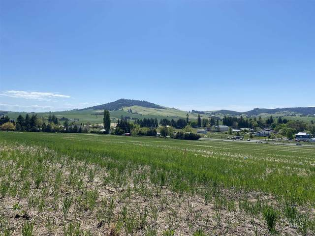 1315 Notting Hill Drive, Moscow, ID 83843 (MLS #98803659) :: The Bean Team
