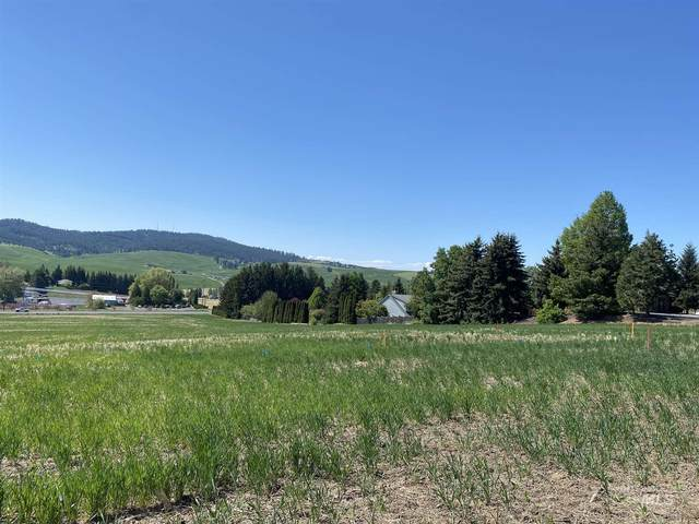 1321 Ridgeview, Moscow, ID 83843 (MLS #98803660) :: The Bean Team