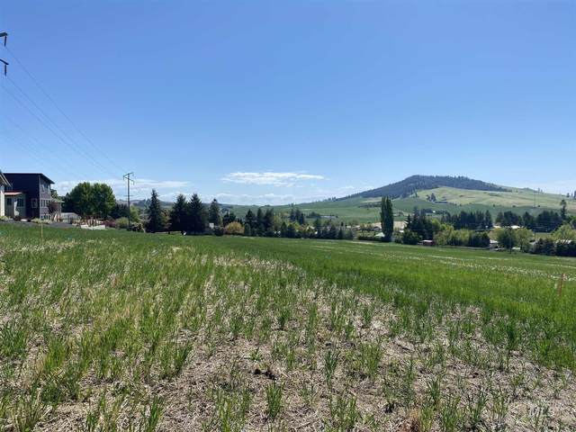 1315 Ridgeview, Moscow, ID 83843 (MLS #98803661) :: The Bean Team
