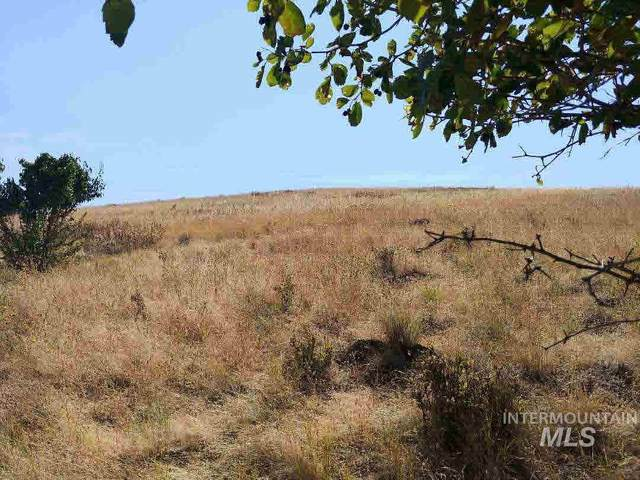 Lot C Forsman Road, Lewiston, ID 83501 (MLS #98804319) :: Team One Group Real Estate