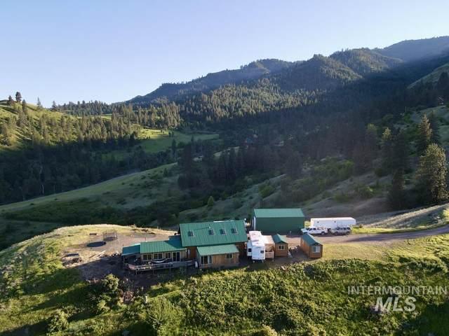 141 Shuck Creek, White Bird, ID 83554 (MLS #98805506) :: Haith Real Estate Team