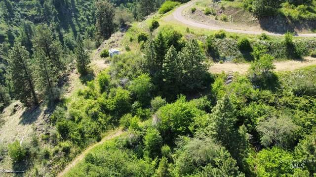 Lot 27 Twin River Ranch Phase II, White Bird, ID 83554 (MLS #98805885) :: Build Idaho
