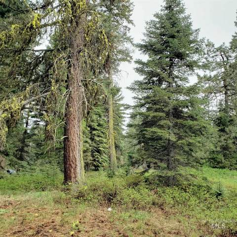 12 Andy Lane, Donnelly, ID 83615 (MLS #98805926) :: Haith Real Estate Team