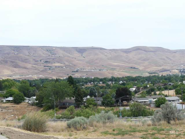 2867 Knollcrest Dr, Lewiston, ID 83501 (MLS #98806320) :: Epic Realty