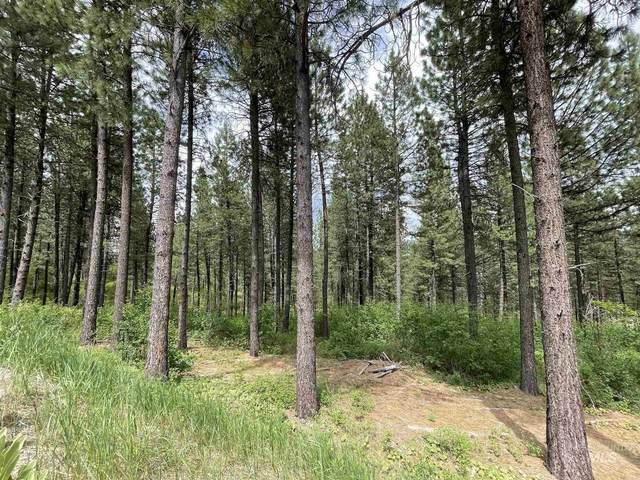 Lot 69 Shadow Ridge, Garden Valley, ID 83622 (MLS #98806386) :: Own Boise Real Estate
