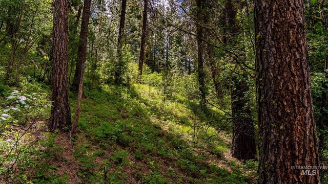 457 Collier View, Cascade, ID 83611 (MLS #98806891) :: Hessing Group Real Estate