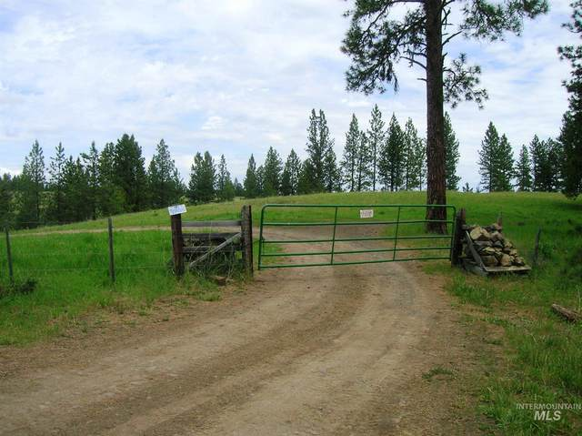 675 Scully Creek Road, Cottonwood, ID 83522 (MLS #98806908) :: New View Team