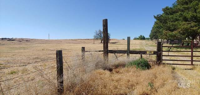 1824 E Locust Ln, Nampa, ID 83651 (MLS #98806989) :: Boise Home Pros