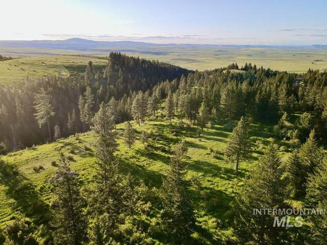 TBD Old White Bird Hill Road, Grangeville, ID 83530 (MLS #98807335) :: Epic Realty
