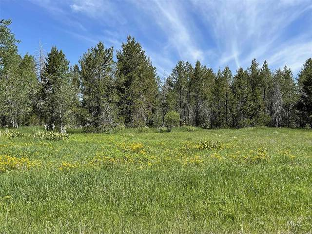 170 Heath Place, Donnelly, ID 83615 (MLS #98807825) :: Team One Group Real Estate