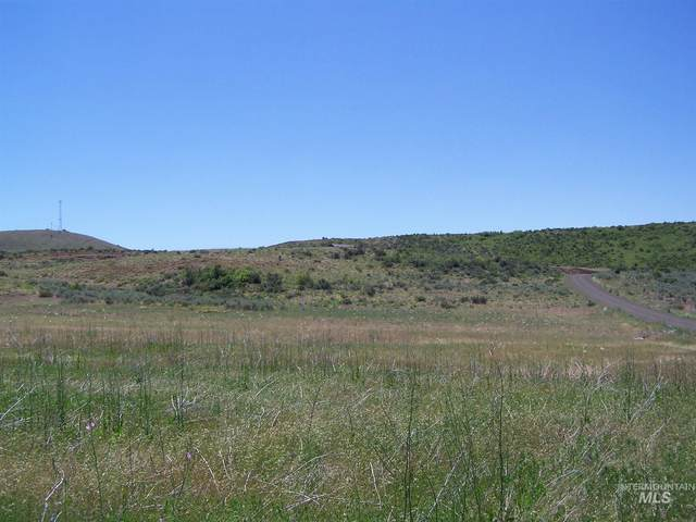 Lot 15 Mesa Meadows Sub, Council, ID 83612 (MLS #98808239) :: Epic Realty