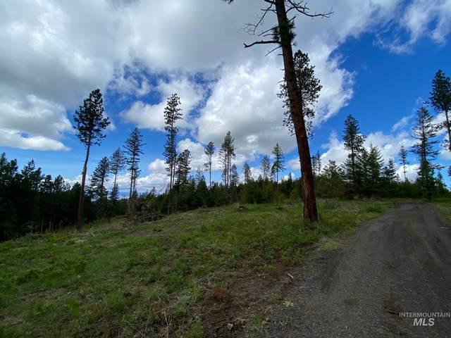 Parcel 3 Black Bear Bend, Lewiston, ID 83501 (MLS #98808606) :: Epic Realty