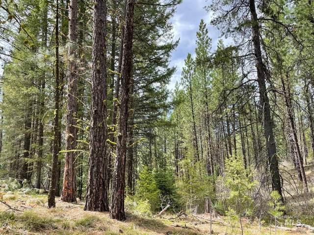 000 Corral Creek Road, Cascade, ID 83611 (MLS #98808989) :: Epic Realty