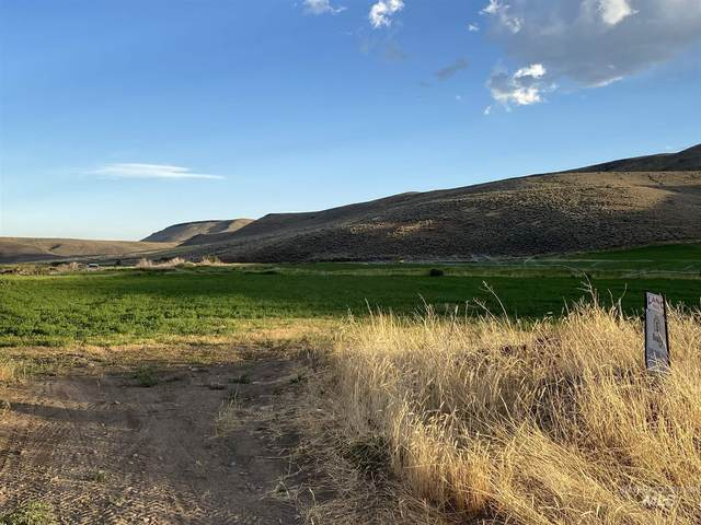 TBD Foothill Road, Carey, ID 83320 (MLS #98809011) :: Epic Realty