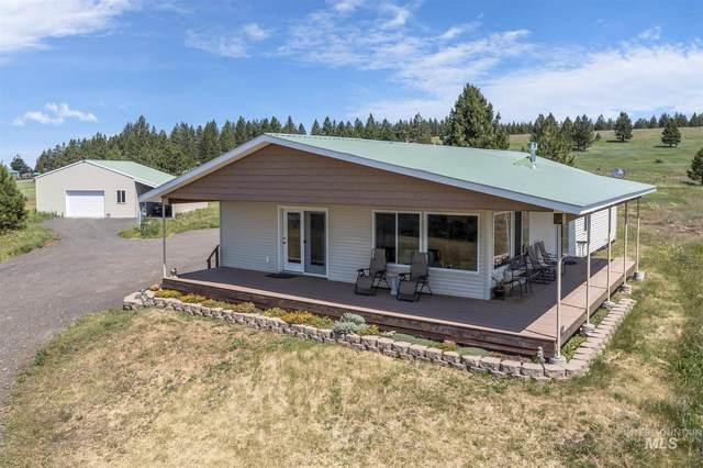 1561 Doumecq Rd, Cottonwood, ID 83522 (MLS #98809221) :: Haith Real Estate Team