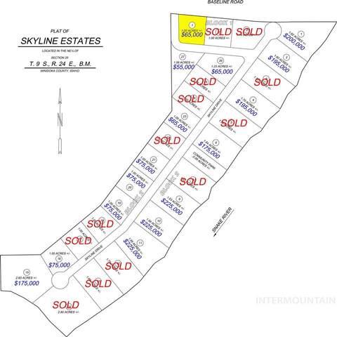 376 Skyline Dr, Rupert, ID 83350 (MLS #98809485) :: Boise Home Pros
