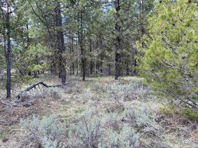 144 Casey Lane, Donnelly, ID 83615 (MLS #98809998) :: Michael Ryan Real Estate