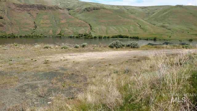 1491 River Ridge Dr, Asotin, WA 99402 (MLS #98810147) :: Team One Group Real Estate