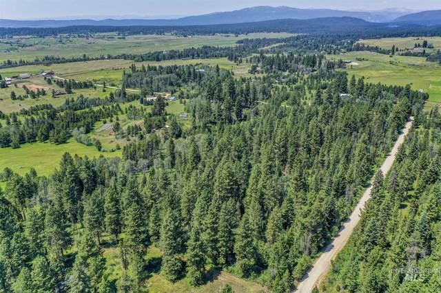 000 Heikkila Lane, Mccall, ID 83638 (MLS #98810521) :: Haith Real Estate Team