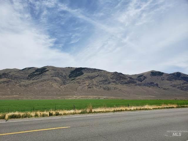 TBD N Us Highway 93, Moore, ID 83255 (MLS #98811420) :: Team One Group Real Estate