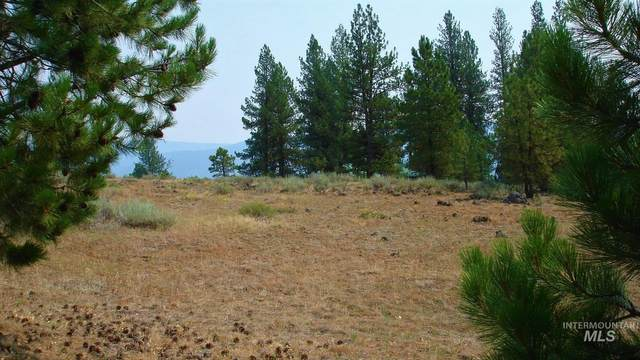 Lot 17 Baneberry, New Meadows, ID 83654 (MLS #98811423) :: Juniper Realty Group
