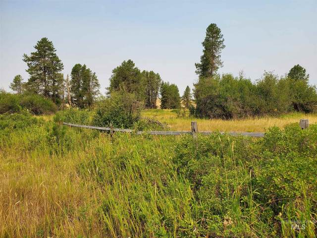 1151 Highway 9, Deary, ID 83823 (MLS #98811445) :: Minegar Gamble Premier Real Estate Services