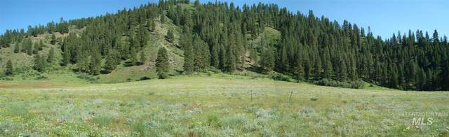 TBD Blk 1 Lot 4 Payette River Heights, Garden Valley, ID 83622 (MLS #98811498) :: Haith Real Estate Team