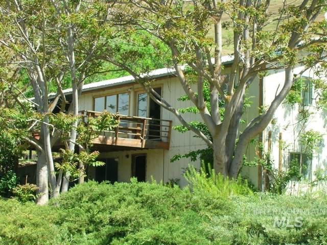269 Mckenzie, White Bird, ID 83554 (MLS #98811872) :: Haith Real Estate Team
