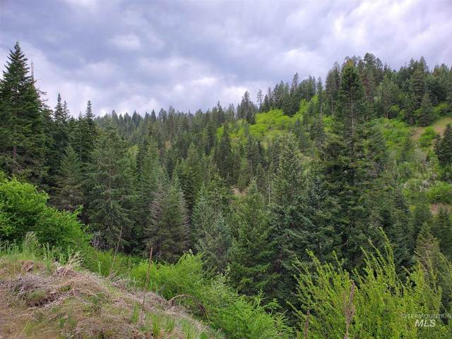 TBD Clearwater Rd, Clearwater, ID 83539 (MLS #98813365) :: Michael Ryan Real Estate