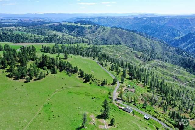 2029 Carrot Ridge, Kamiah, ID 83539 (MLS #98813384) :: Michael Ryan Real Estate