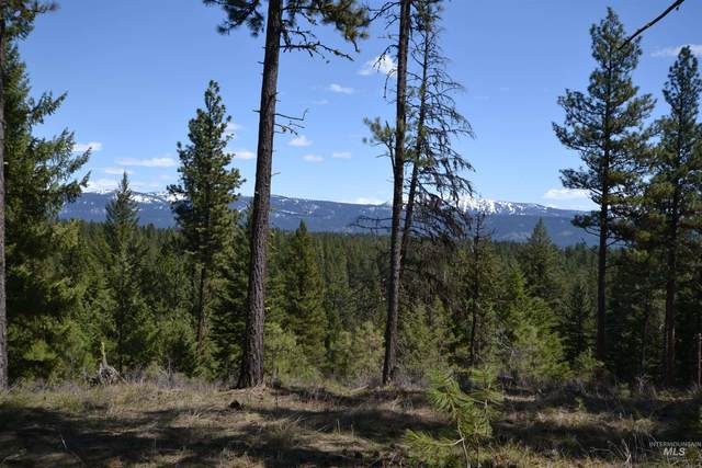 tbd Mountain View Ct, New Meadows, ID 83654 (MLS #98814451) :: Juniper Realty Group