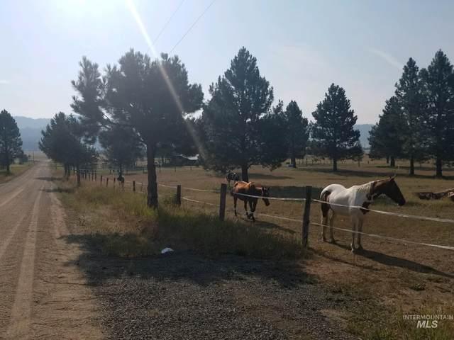 15 Rising Ln, Cascade, ID 83611 (MLS #98814492) :: First Service Group
