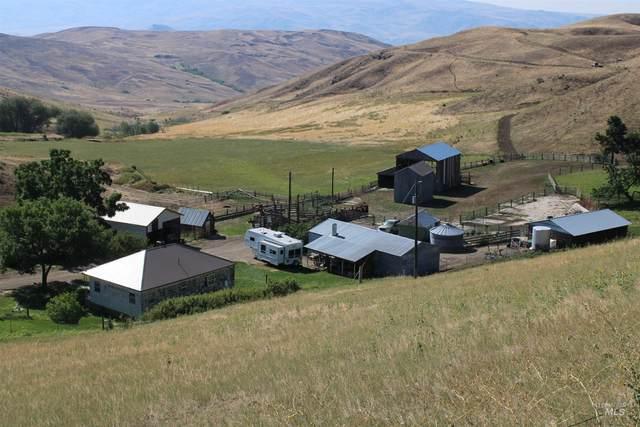 5450 Butte Rd, Emmett, ID 83617 (MLS #98814604) :: Trailhead Realty Group