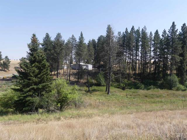 1992 Herrick Road, Craigmont, ID 83523 (MLS #98815442) :: Boise River Realty